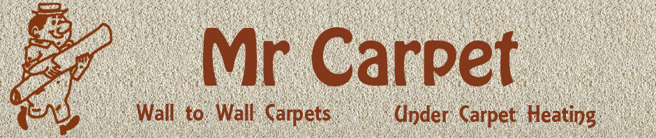 Mr Carpet